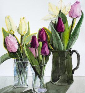 Three Pots of Tulips