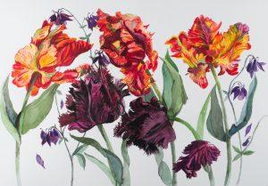 Rosy's Tulips