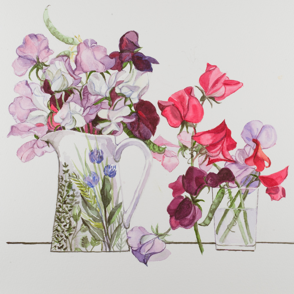 Two Pots of Sweet Peas